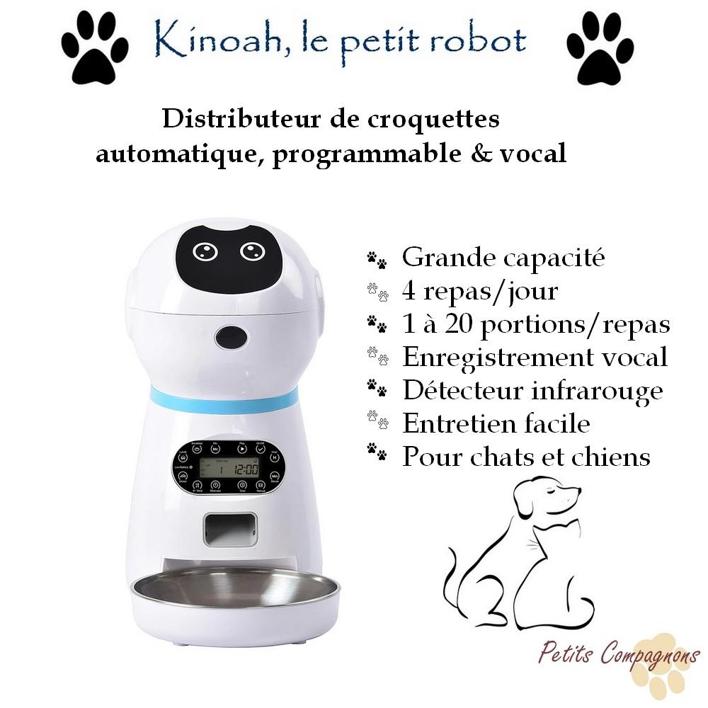 Kinoah le petit robot