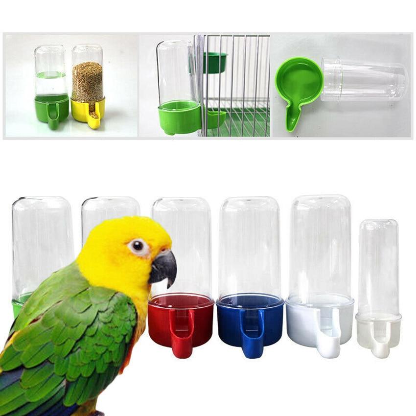 Distributeur coloré