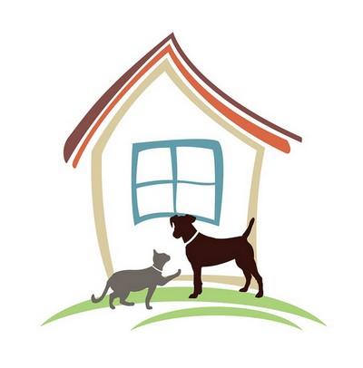 Maison-decorations-chien-chat-coussins-tapis