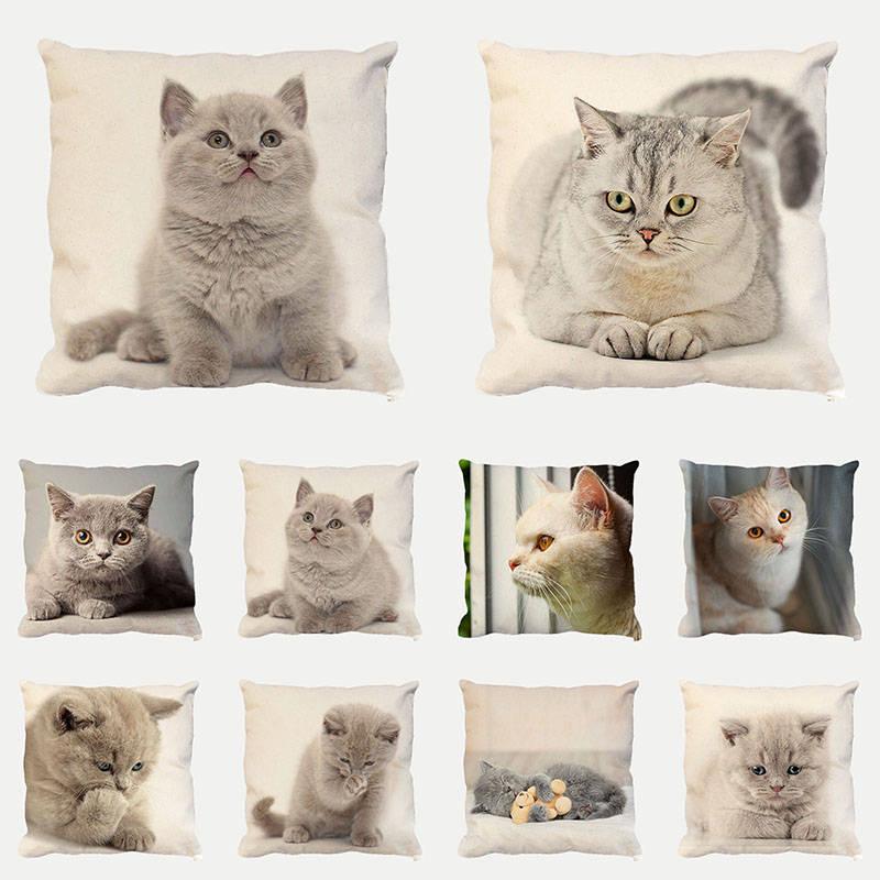 Housse de coussin chats