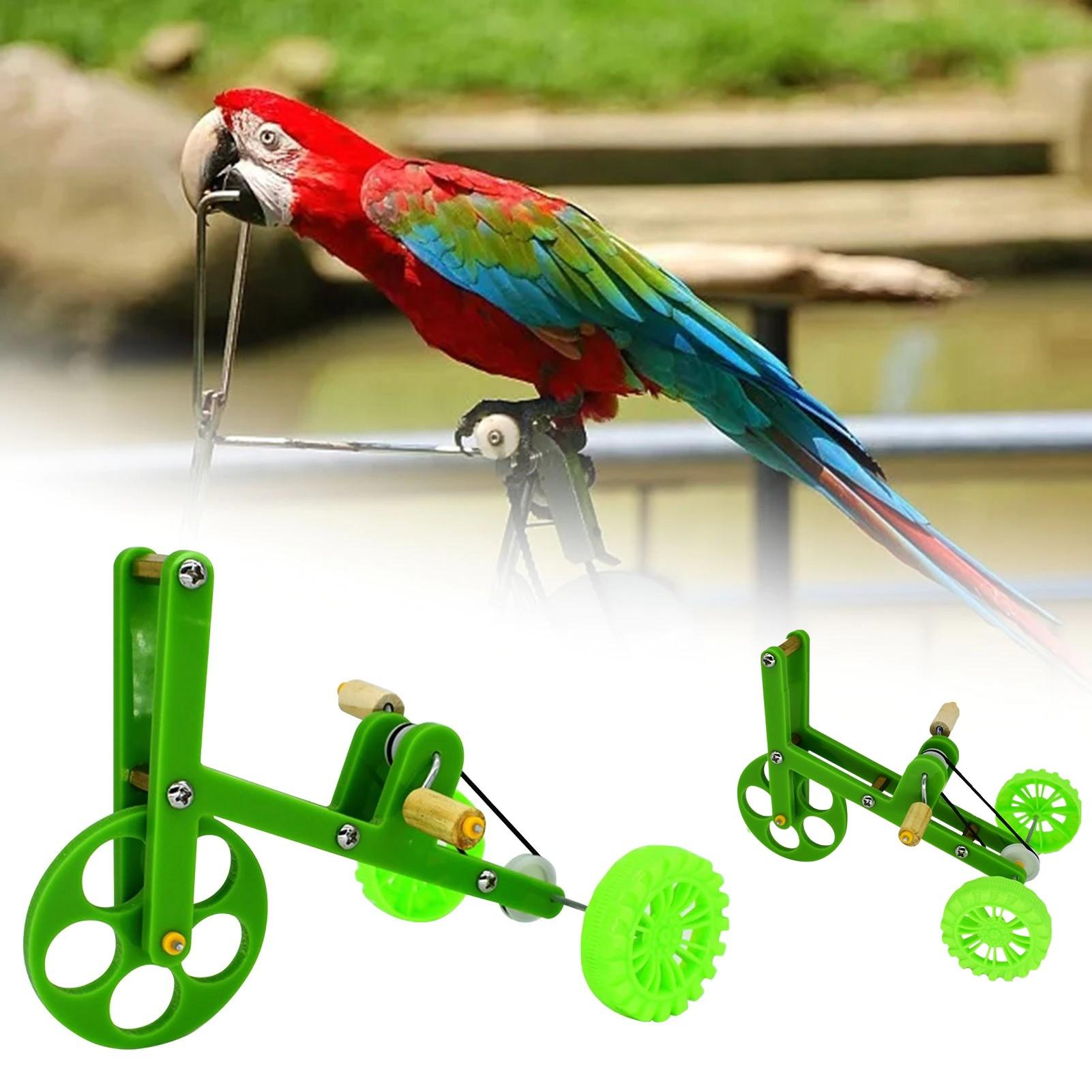 Velo-pour-oiseau-Jouet-pour-oiseau-Bicyclette-pour-oiseau