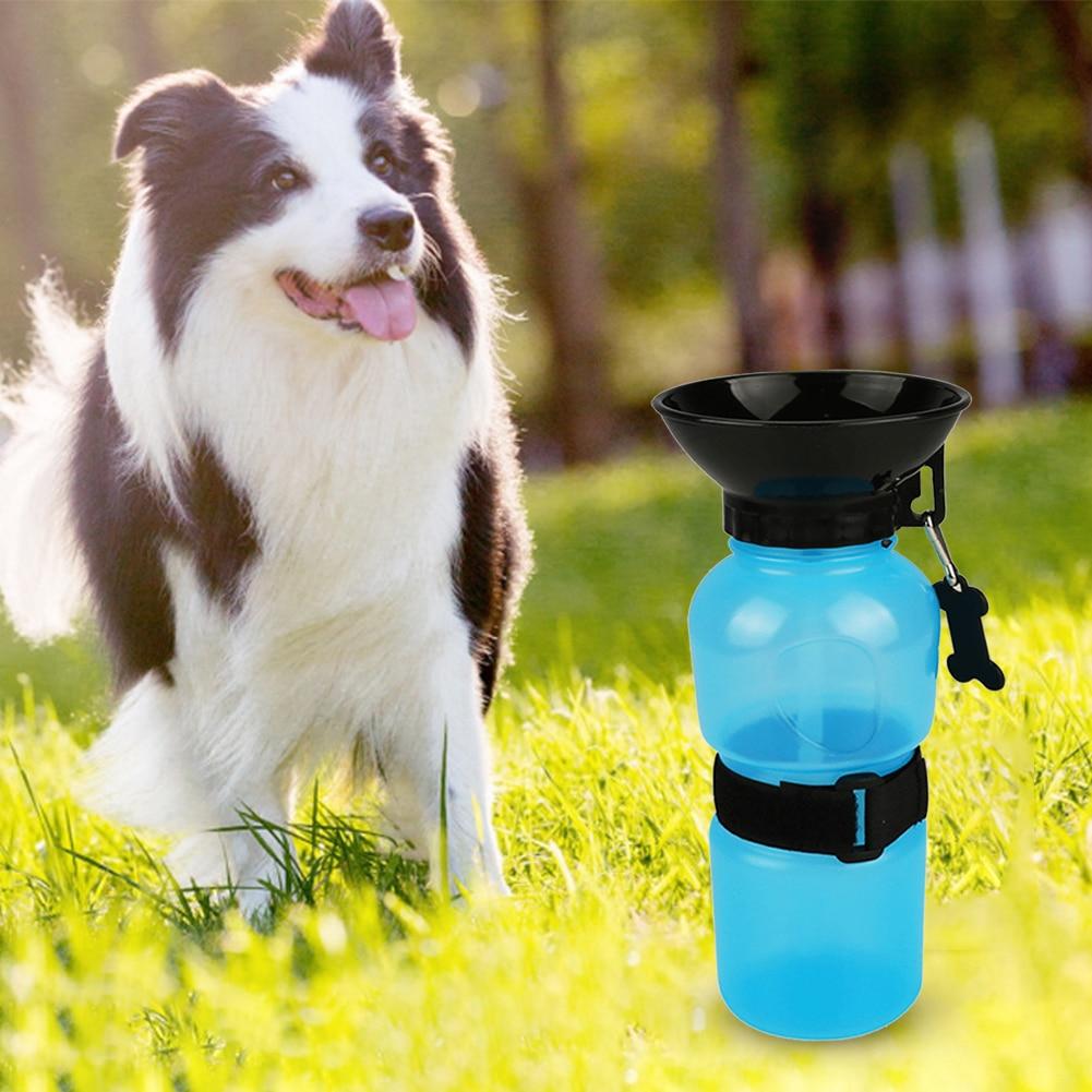 Bouteille d\'eau portable