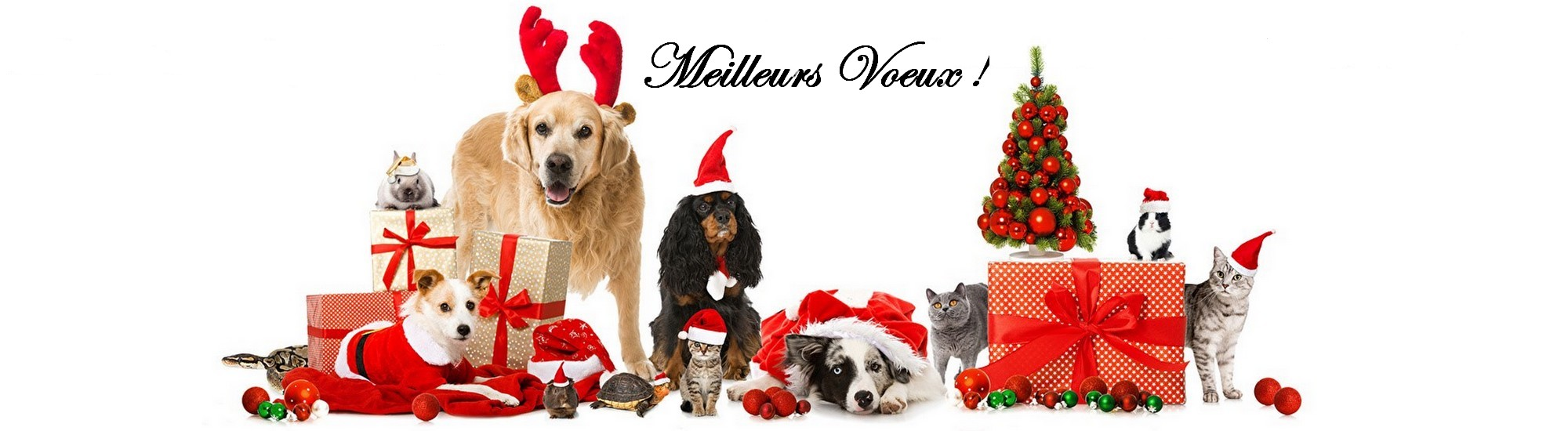 promotions noel animaux