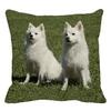 Coussin-chien-Housse-coussin-chien-Coussin-chien-blanc-Coussin-motif-chien
