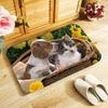Tapis-de-sol-animaux-Paillasson-animaux-Tapis-d-interieur-chat-Tapis-imprime-chien-Tapis-lapin-Paillasson-animal-domestique