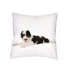 Coussin-chien-Housse-coussin-chien-Coussin-blanc-imprime-chien-Coussin-motif-chien-Coussin-husky