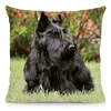 Coussin-chien-Housse-coussin-chien-Coussin-scottish-terrier -Coussin-motif-chien-Coussin-terrier-ecossais
