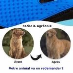 Gant-de-toilettage-pour-chats-chiens-chiots-Brosse-de-nettoyage-chien-chiot-chat-Gant-de-massage-animaux-de-compagnie-Brosse-anti-poils
