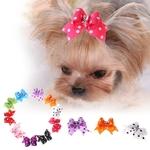 Elastique-pour-chien-Nœud-elastique-pour-chien-Nœuds-elastiques-pour-chien-Noeud-pour-chien-Nœud-luxe-chien-Nœud-perle-pour-chien