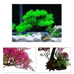 Bonsai-aquarium-Arbre-aquarium-Bonsai-hardscape-Bonsai-aquascaping