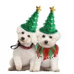 Deguisement-sapin-de-noel-pour-chien-Deguisement-sapin-noel-pour-chat-Deguisement-nouvel-an-pour-chien