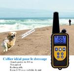Collier-dressage-chien-Collier-electrique-chien-Collier-de-dressage-rechargeable