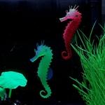 Hippocampe-aquarium-Decoration-pour-aquarium-Décor-aquarium