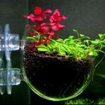 Pot-en-verre-aquarium-Porte-plante-aquarium-Pot-decoration-aquarium