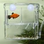 Pondoir-aquarium-Nurserie-poisson-aquarium-Incubateur-aquarium-Isoloir-aquarium