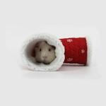 Cadeau-noel-pour-rongeur-Tunnel-noel-pour-rongeur-Tunnel-3-entrees-rongeur-Cadeau-rongeur-Idee-cadeau-lapin-Cadeau-cochon-d-inde