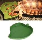 Distributeur-d-eau-pour-tortue-Piscine-pour-tortue-Abreuvoir-pour-tortue-Mangeoire-pour-tortue