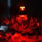 Ampoule-uvb-terrarium-Ampoule-infrarouge-terrarium-Ampoule-e27-terrarium-Ampoule-veilleuse-terrarium