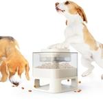 Distributeur-automatique-croquettes-pour-chien-Distributeur-friandises-pour-chien-Jouet-automatique-pour-chien