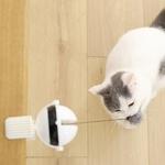 Yoyo-electrique-chat-Yoyo-pour-chat-Jouet-interactif-pour-chat-Yo-yo-pour-chat