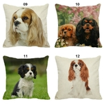 Coussin-chat-Housse-coussin-chat-cavalier-Coussin-chat-ckc-Coussin-avec-photo-cavalier-Coussin-cavalier-king-charles