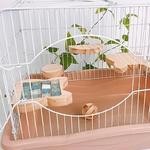 Couchage-rafraichissant-pour-rongeur-Lit-d-ete-pour-rongeur-Couchage-rafraichissant-hamster-Lit-rafraichissant-hamster