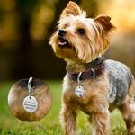 Collier-pour-chien-chat-chiot-en-acier-inoxydable-Gravure-gratuite-Collier-d-identification-Médaille-personnalisee-animaux-compagnie-Medaille-alu-aluminium-Medaille-ronde-strass