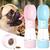 Bouteille-d-eau-Portable-pour-chiens-Animal-compagnie-chien-chat-chiot-Gourde-multifonctions-Gourde-2-en-1