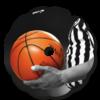 ballon_basket_flasque_fauteuil_roulant_02