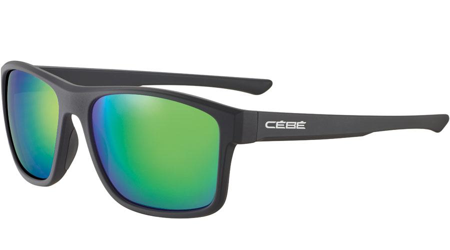 cbs034