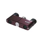 Jumelle Nikon - 4X10 DCF BORDEAUX