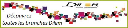 dilem2