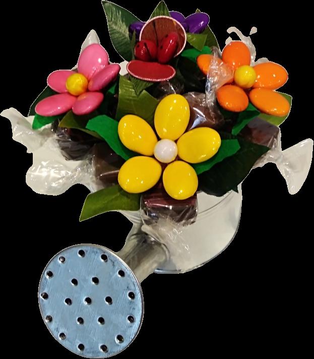 Arrosoir dragées et chocolats fête des mères coccinelle