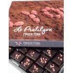 Ecrin Le Pralilyon®, bonbon de chocolat, spécialité lyonnaise