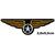Patch armée militaire ailes étoile v3