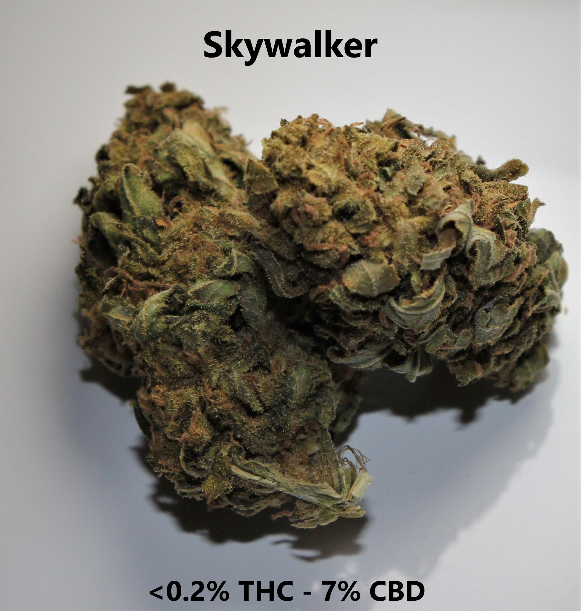 Skywalker  <0.2% THC - 7% CBD