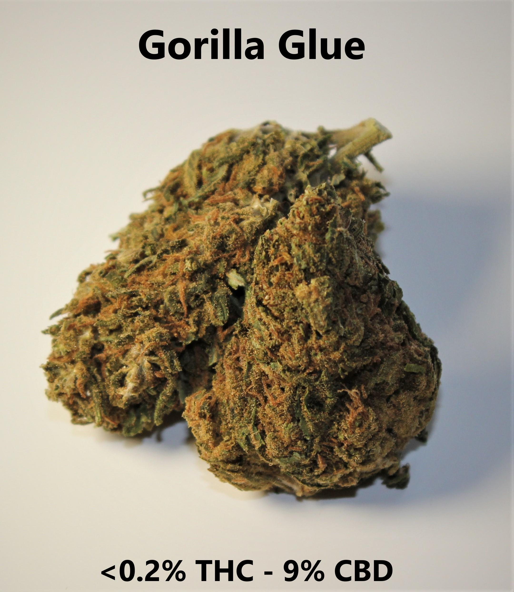 Gorilla Glue <0.2% THC - 9% CBD