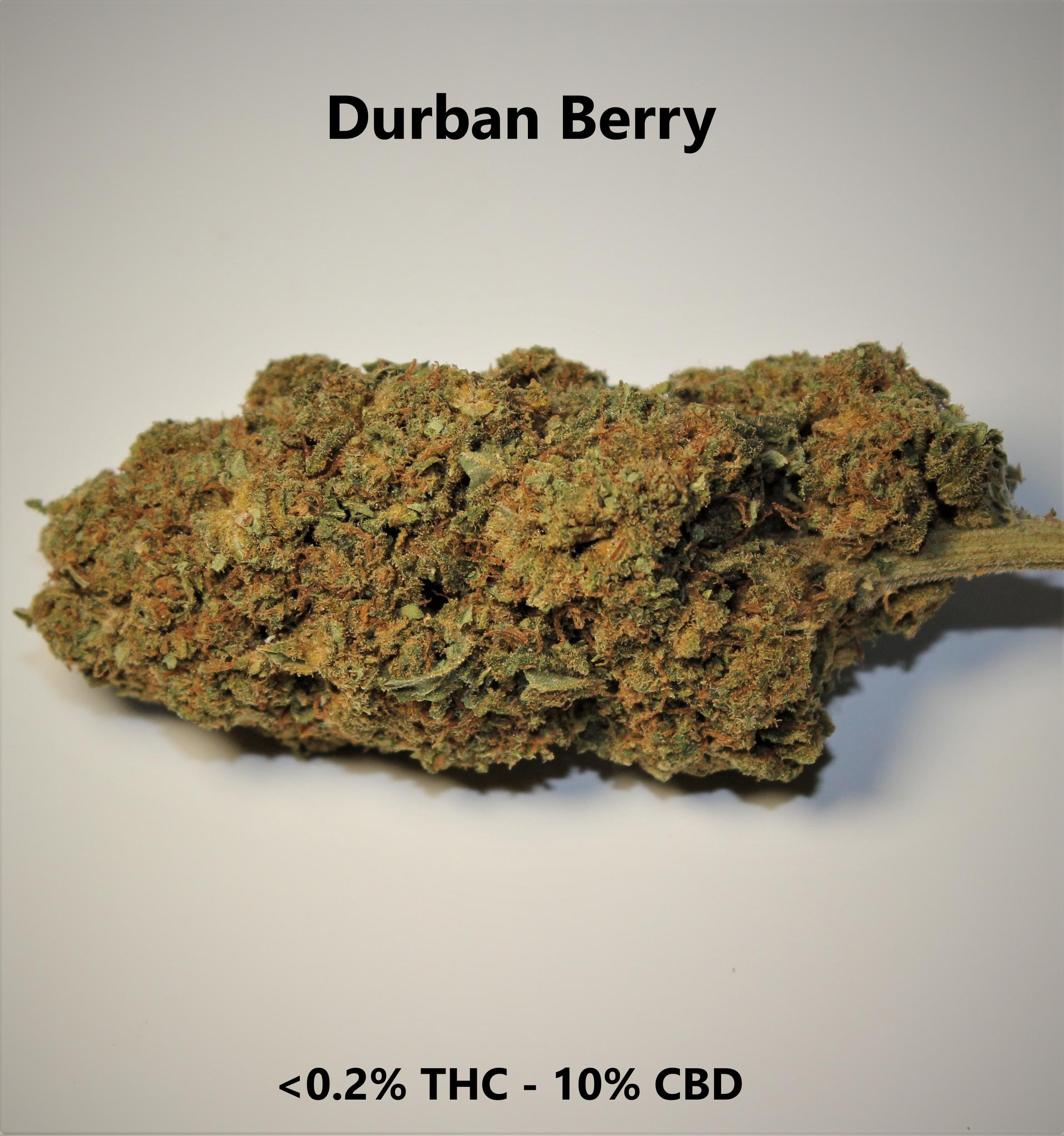 Durbanberry