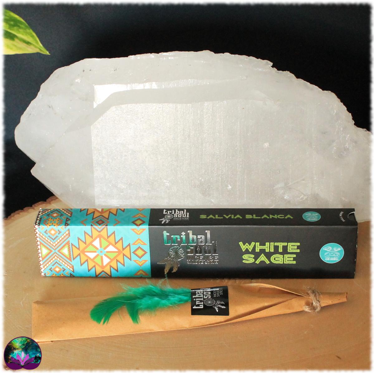Encens bâton Sauge blanche 15 gr de Tribal Soul