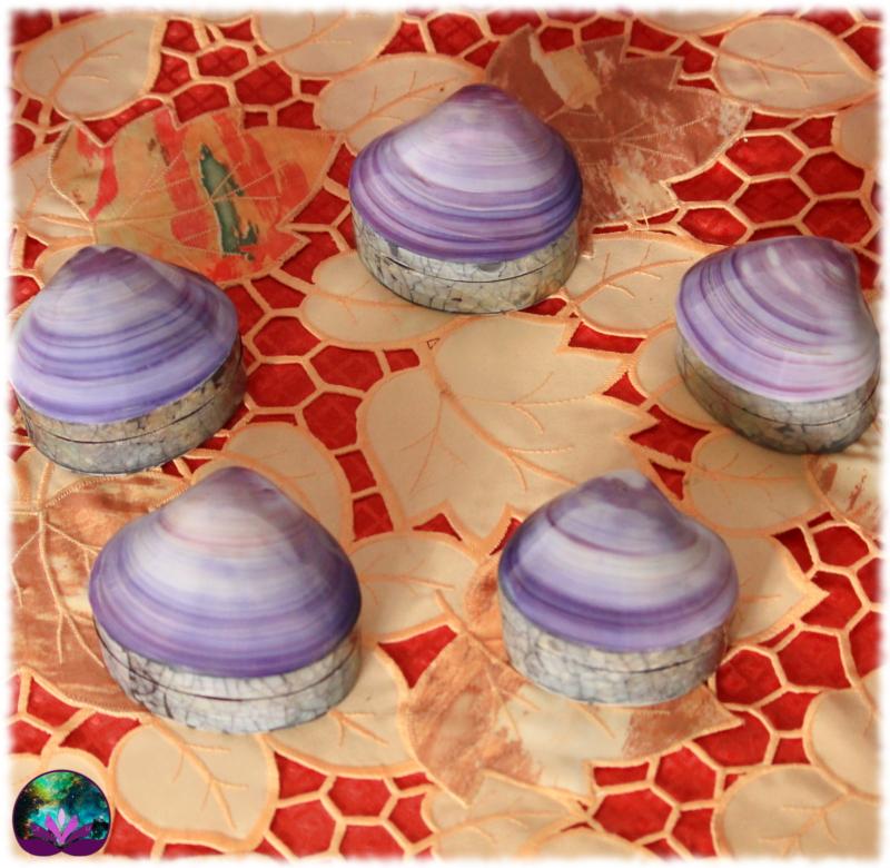 Petit coffret en coquillage violet et paua