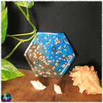 vide poche coupelle hexagonal fond marin coquillage sable mer