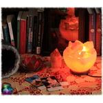 lampe à sel vasque 6