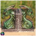 serre livres dragons vert