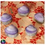petit coffret coquillage et paua violet