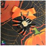 pochette cartes araignée citrouilles halloween 3