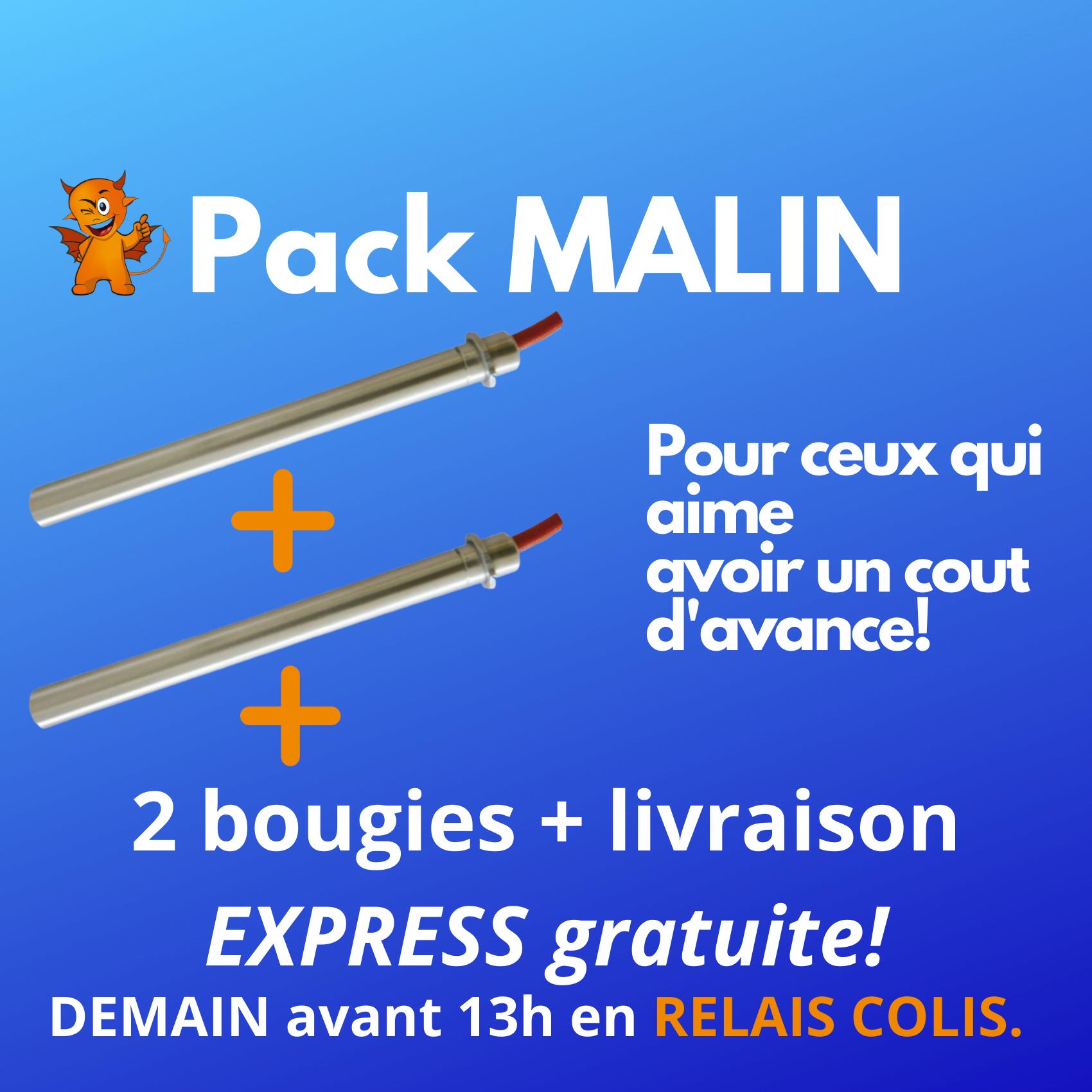 PACK MALIN : 2 Zündkerzen Expressversand Zustellung Paketshop