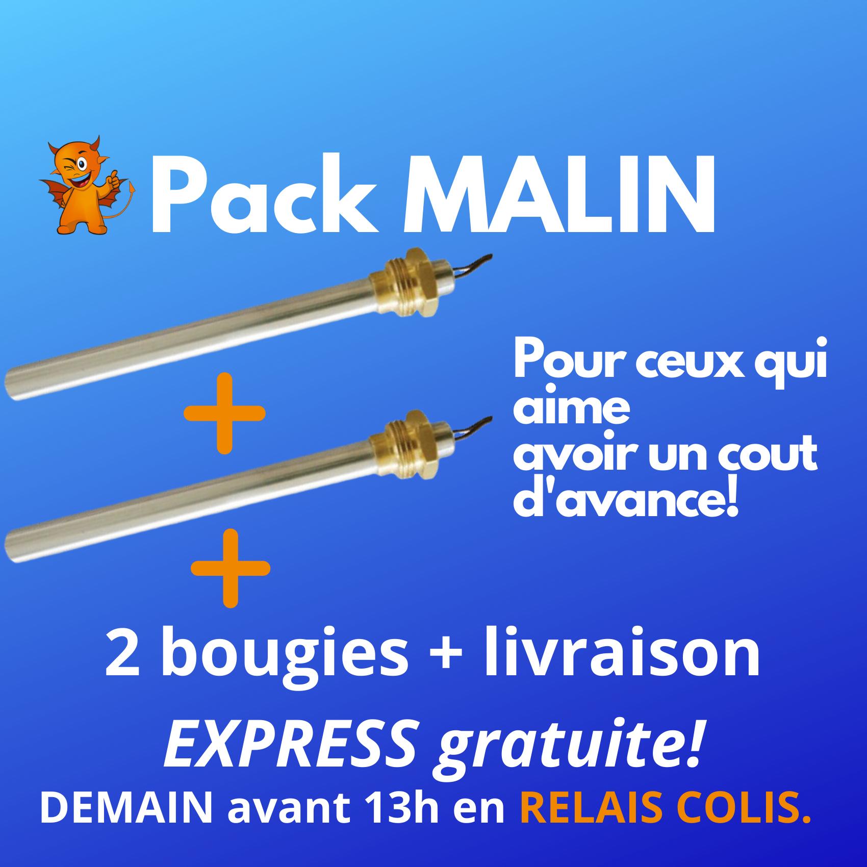 PACK MALIN : 2 Zündkerzen + Express-Versand Zustellung Paketshop