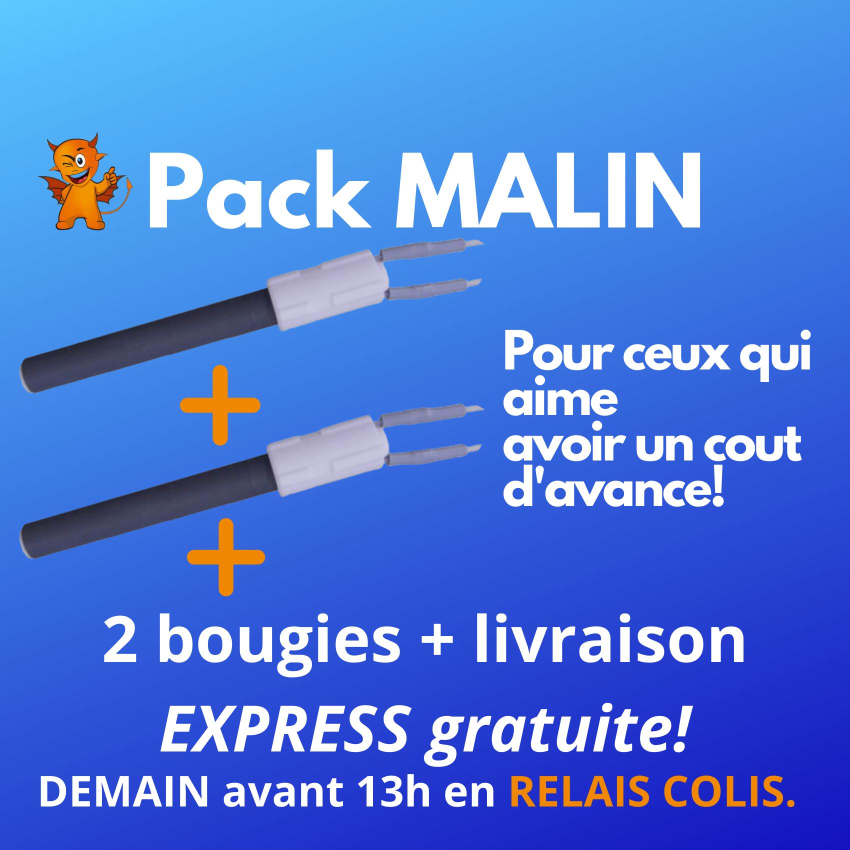 PACK MALIN : 2 Zündkerze + Express-Versand an Paketshop