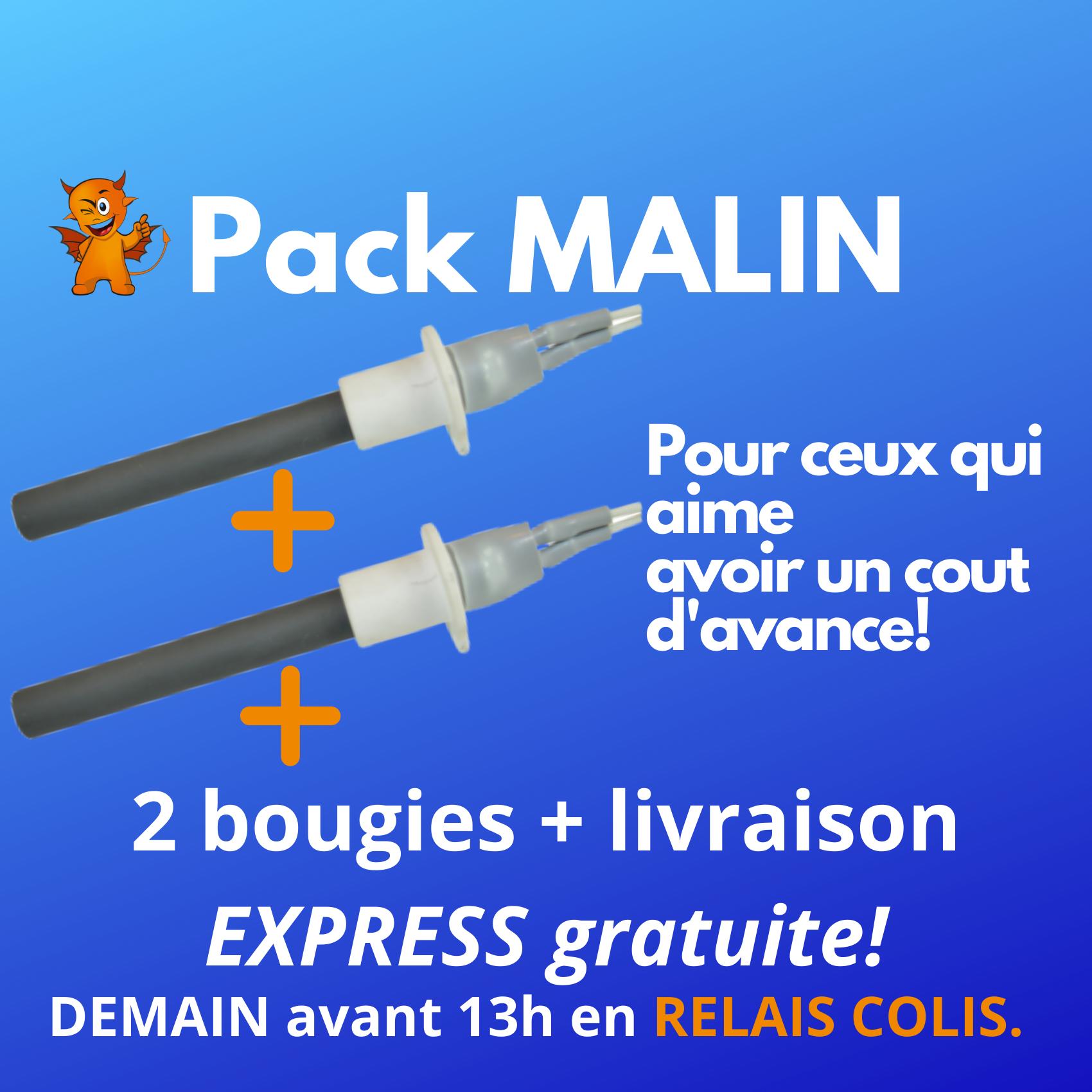 PACK MALIN : 2 Zündkerzen + Express-Versand mit Zustellung im Paketshop