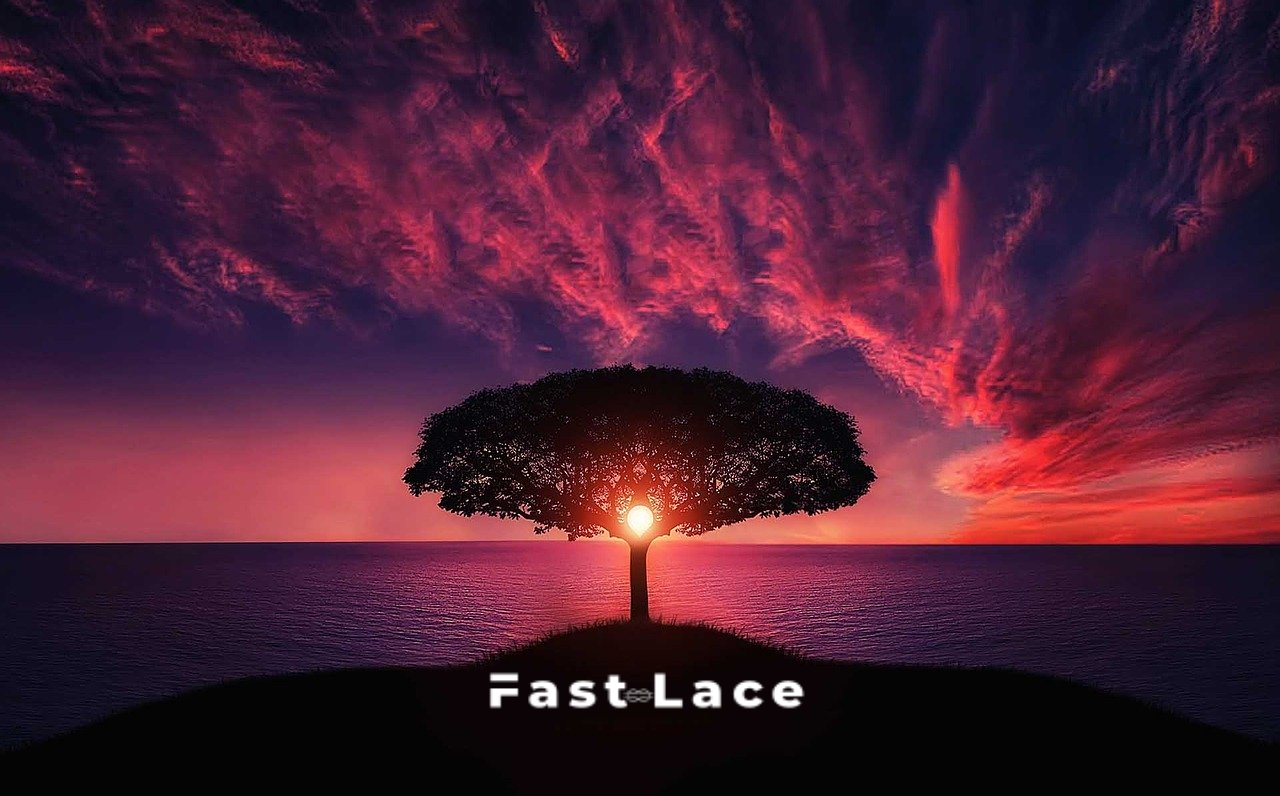 fast lace coucher logo livraison